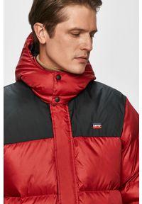Czerwona kurtka Levi's® z kapturem, biznesowa