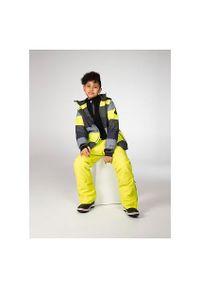 Kurtka dla dzieci narciarska Protest Trade 6810802. Materiał: poliester, materiał. Sezon: lato, zima. Sport: narciarstwo