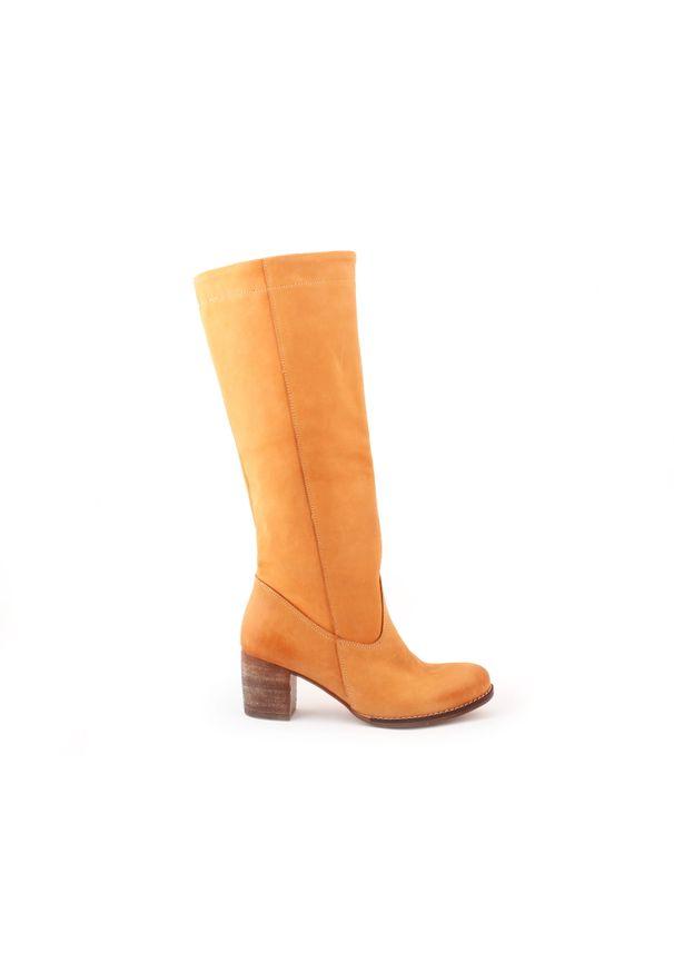 Kozaki Zapato wąskie, na jesień, w kolorowe wzory