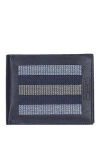 Niebieski portfel Cedar