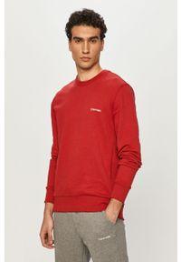 Czerwona bluza nierozpinana Calvin Klein casualowa, gładkie