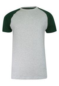 Brave Soul - T-shirt Szaro-Zielony Bawełniany, Krótki Rękaw Raglanowy, Dwukolorowy, Męski -BRAVE SOUL. Okazja: na co dzień. Kolor: wielokolorowy, zielony, szary. Materiał: wiskoza, bawełna. Długość rękawa: krótki rękaw. Długość: krótkie. Sezon: wiosna, lato. Styl: casual