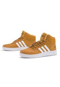 Sneakersy Adidas z cholewką, na co dzień