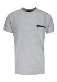Kings - T-shirt Męski, Szary, 100% BAWEŁNA, U-neck, z Kieszonką, Męski, Krótki Rękaw -KINGS. Okazja: na co dzień. Kolor: szary. Materiał: bawełna. Długość rękawa: krótki rękaw. Długość: krótkie. Styl: casual