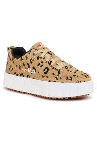 Fila Sneakersy Sandblast S Wmn 1011036.30Z Brązowy. Kolor: brązowy