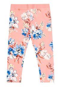 Różowe legginsy Primigi