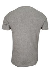 Szary t-shirt Brave Soul casualowy, z nadrukiem, na co dzień