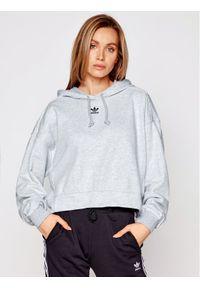 Adidas - adidas Bluza GN4776 Szary Regular Fit. Kolor: szary