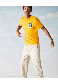 Lacoste - LACOSTE - Żółty t-shirt z termoczułym nadrukiem Regular fit. Kolor: żółty. Materiał: jersey, jeans, prążkowany, bawełna. Wzór: nadruk