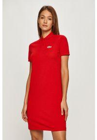 Czerwona sukienka Lacoste prosta, mini, casualowa