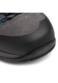 Szare buty trekkingowe Lowa z cholewką, Gore-Tex, trekkingowe