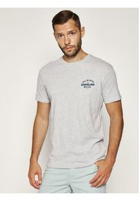 Quiksilver T-Shirt Energy Project EQYZT05816 Szary Regular Fit. Kolor: szary