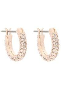 Swarovski Kolczyki Stone Pe Mini Hoop 5446008 Różowy. Kolor: różowy