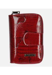 Czerwony portfel Cedar