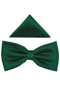 Zielona muszka elegancka
