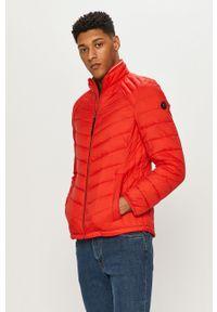 Czerwona kurtka Tom Tailor gładkie, bez kaptura, na co dzień
