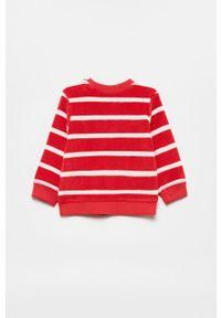 Czerwona bluza OVS casualowa, na co dzień, bez kaptura, z aplikacjami