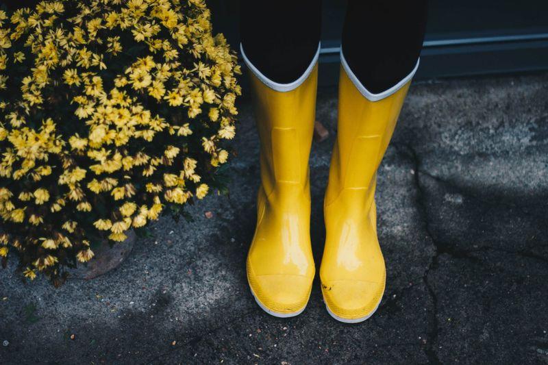 żółte kalosze damskie.jpeg