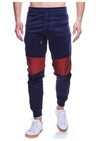 Niebieskie spodnie dresowe Recea