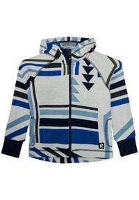 Reima Bluza Northern 536461 Niebieski Regular Fit. Kolor: niebieski