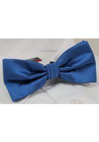 Niebieska muszka Alties elegancka