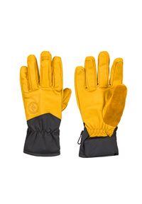 Żółte rękawiczki sportowe Black Diamond z motywem zwierzęcym