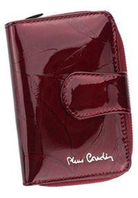 Portfel damski Pierre Cardin 02 LEAF 115 BORDOWY. Kolor: czerwony. Materiał: skóra. Wzór: aplikacja