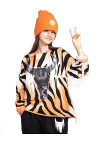 ROBERT KUPISZ - Pomarańczowa bluza Kids Crazy Bull. Kolor: pomarańczowy. Materiał: bawełna. Wzór: motyw zwierzęcy, aplikacja, nadruk