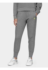 4f - Spodnie dresowe damskie z kolekcji LIME LINE. Kolor: szary. Materiał: dresówka