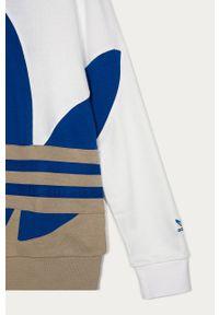 Wielokolorowa bluza adidas Originals casualowa, z kapturem