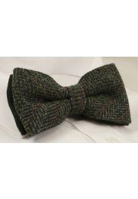 Zielona muszka EM Men's Accessories elegancka