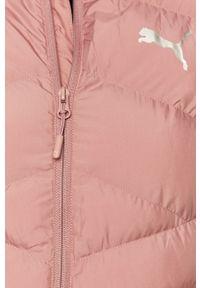 Różowa kurtka Puma bez kaptura, raglanowy rękaw