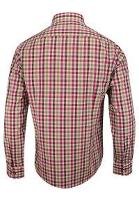 Chiao - Różowo-Oliwkowa Koszula Męska z Długim Rękawem, 100% Bawełna -CHIAO- Taliowana, w Kratkę. Okazja: do pracy, na spotkanie biznesowe. Kolor: czerwony, różowy, wielokolorowy. Materiał: bawełna. Długość rękawa: długi rękaw. Długość: długie. Wzór: kratka. Styl: biznesowy, elegancki