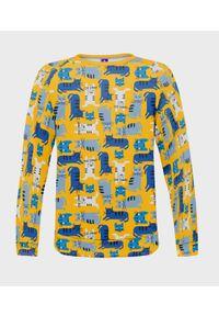 MegaKoszulki - Bluza damska fullprint Blue Cats. Długość: długie. Styl: klasyczny