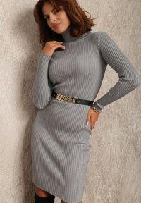 Renee - Szara Sukienka Brierra. Typ kołnierza: golf. Kolor: szary. Materiał: dzianina, prążkowany. Długość rękawa: długi rękaw. Wzór: jednolity. Typ sukienki: dopasowane. Długość: midi