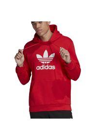 Bluza Adidas długa, z długim rękawem