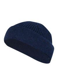 Niebieska czapka Pako Jeans na zimę, klasyczna