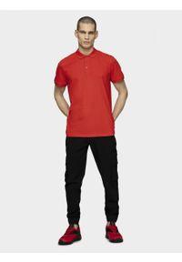 Czerwona koszulka polo outhorn polo, z krótkim rękawem