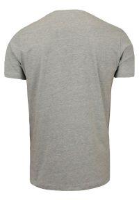 Popielata Męska Koszulka (T-shirt) - Brave Soul - V-Neck. Okazja: na co dzień. Kolor: szary. Materiał: wiskoza, bawełna. Styl: casual