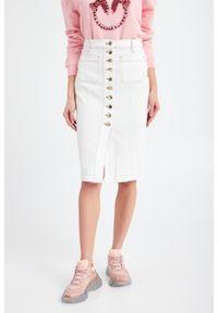 Spódnica Pinko klasyczna