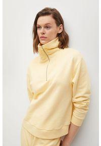 mango - Mango - Bluza CELIA. Okazja: na co dzień. Kolor: żółty. Materiał: dzianina. Długość rękawa: długi rękaw. Długość: krótkie. Styl: casual