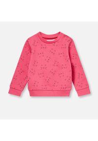 Różowa bluza Sinsay z nadrukiem