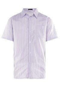 Born2be - Biało-Fioletowa Koszula Othriphi. Okazja: na co dzień. Kolekcja: plus size. Kolor: biały. Materiał: tkanina, jeans. Długość rękawa: krótki rękaw. Długość: krótkie. Wzór: gładki, paski. Styl: klasyczny, casual