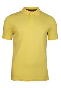 T-shirt Adriano Guinari na co dzień, polo, casualowy, krótki