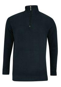 Niebieski sweter Pako Jeans bez kaptura, klasyczny