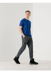 Szare spodnie trekkingowe 4f z nadrukiem