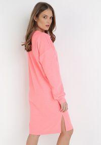 Born2be - Jasnoróżowa Bluza Petoriko. Kolor: różowy. Długość rękawa: długi rękaw. Długość: długie. Wzór: napisy, aplikacja