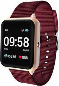 Smartwatch Lenovo S2 Czerwony (LENOVOS2GOLD). Rodzaj zegarka: smartwatch. Kolor: czerwony