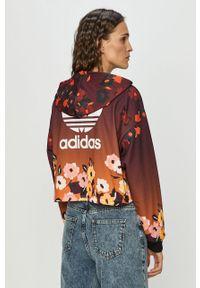Wielokolorowa bluza adidas Originals na co dzień, casualowa