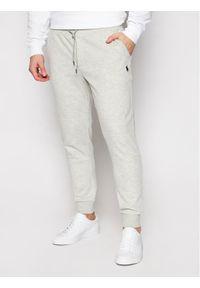 Polo Ralph Lauren Spodnie dresowe Pnt 710652314013 Szary Regular Fit. Kolor: szary. Materiał: dresówka